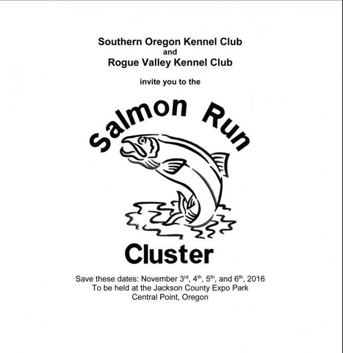 salmon-run